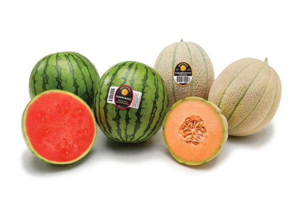 Dulcinea Farms - Melons