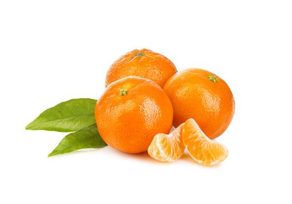 Citrus Family